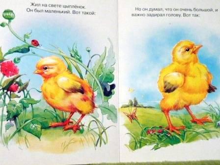 Иллюстрация 1 из 2 для Цыпленок - Корней Чуковский | Лабиринт - книги. Источник: Катерина М.