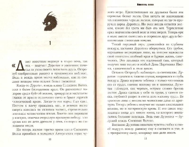 Иллюстрация 1 из 2 для Повелитель кланов - Кристи Голден | Лабиринт - книги. Источник: Cattus