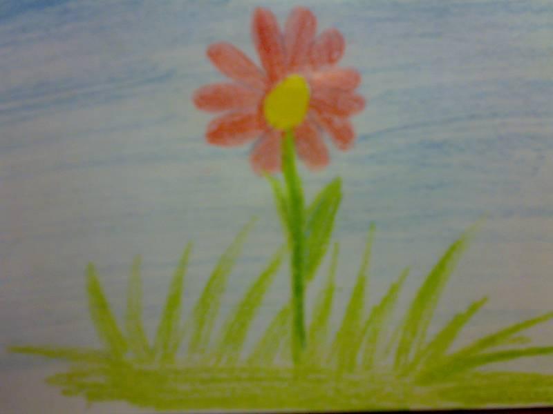 Иллюстрация 1 из 3 для Карандаши CARIOCA 6 цветов | Лабиринт - канцтовы. Источник: Юлия7
