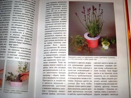 Иллюстрация 1 из 4 для Комнатный огород | Лабиринт - книги. Источник: Zhanna