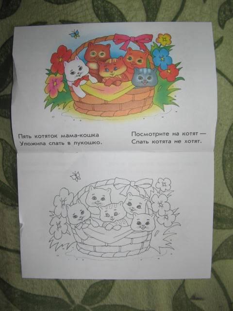 Иллюстрация 1 из 3 для Непослушные котята | Лабиринт - книги. Источник: libe