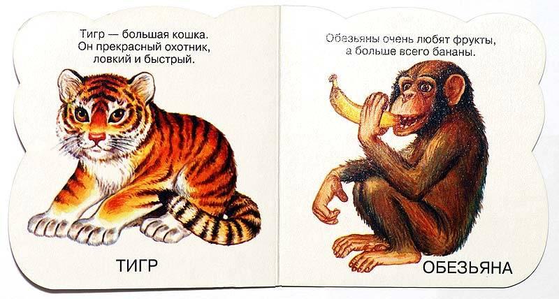 Иллюстрация 1 из 6 для Забавные зверушки: Слонёнок   Лабиринт - книги. Источник: Кнопа2
