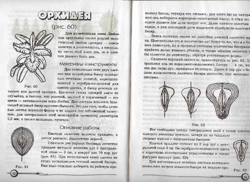 Иллюстрация 1 из 1 для Плетем цветы из бисера.  Книга 2 - Татьяна Ткаченко.