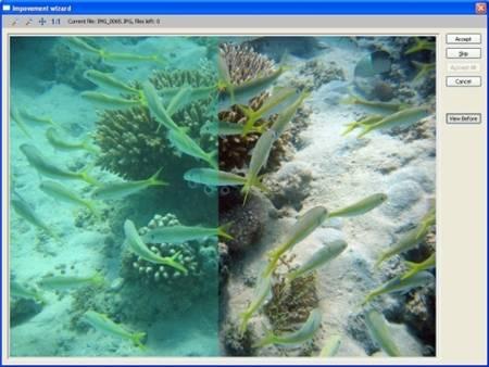 Иллюстрация 1 из 3 для STOIK Imagic 4.0 (CDpc) | Лабиринт - софт. Источник: Юлия7