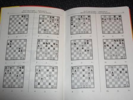 Сергей иващенко учебник шахматных комбинаций владивосток