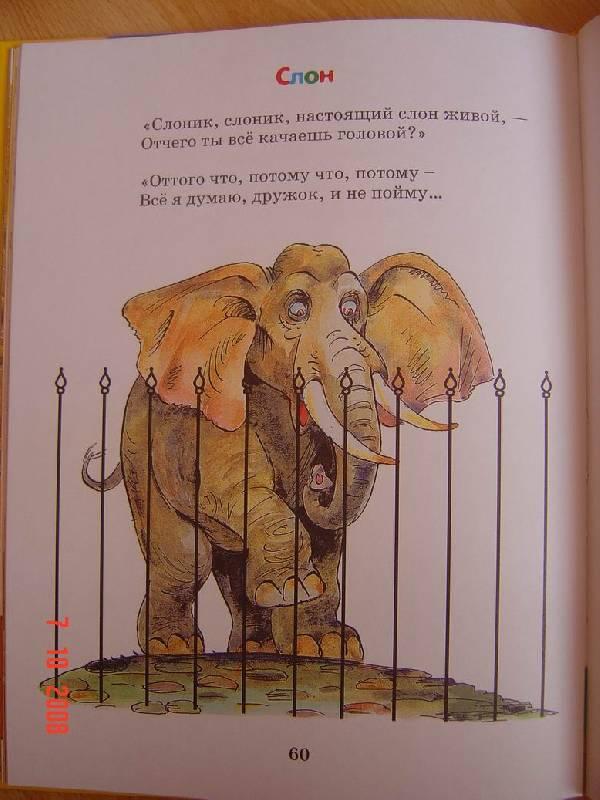 Стихи к подарку слоник 54
