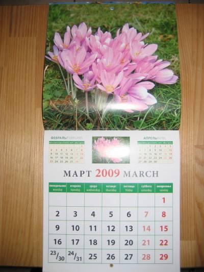 Иллюстрация 1 из 3 для Календарь 2009 Природы (30813)   Лабиринт - сувениры. Источник: Домовушка