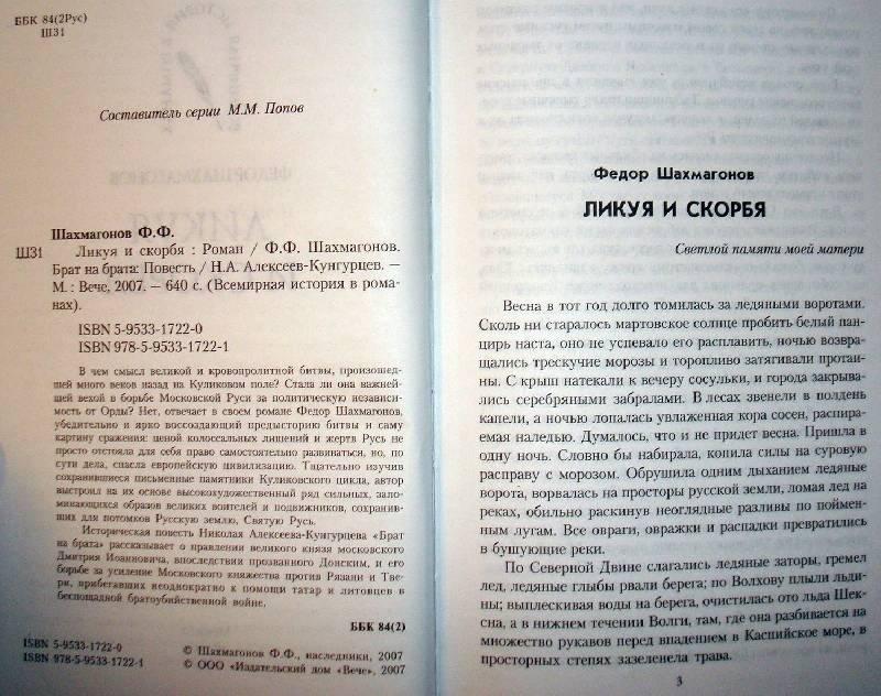 Иллюстрация 1 из 2 для Ликуя и скорбя: Роман - Федор Шахмагонов   Лабиринт - книги. Источник: Мефи