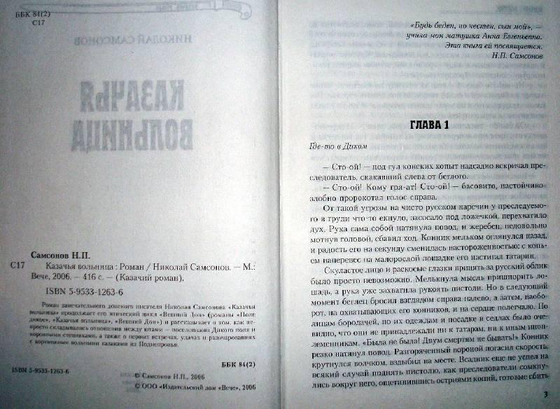 Иллюстрация 1 из 2 для Казачья вольница. Роман - Николай Самсонов | Лабиринт - книги. Источник: Мефи