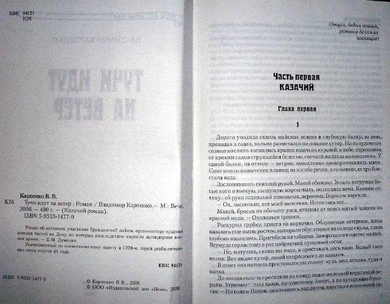 Иллюстрация 1 из 3 для Тучи идут на ветер - Владимир Карпенко | Лабиринт - книги. Источник: Мефи