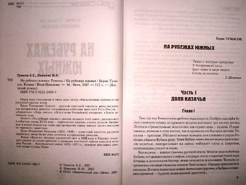Иллюстрация 1 из 3 для На рубежах южных: Романы - Тумасов, Наживин   Лабиринт - книги. Источник: Мефи