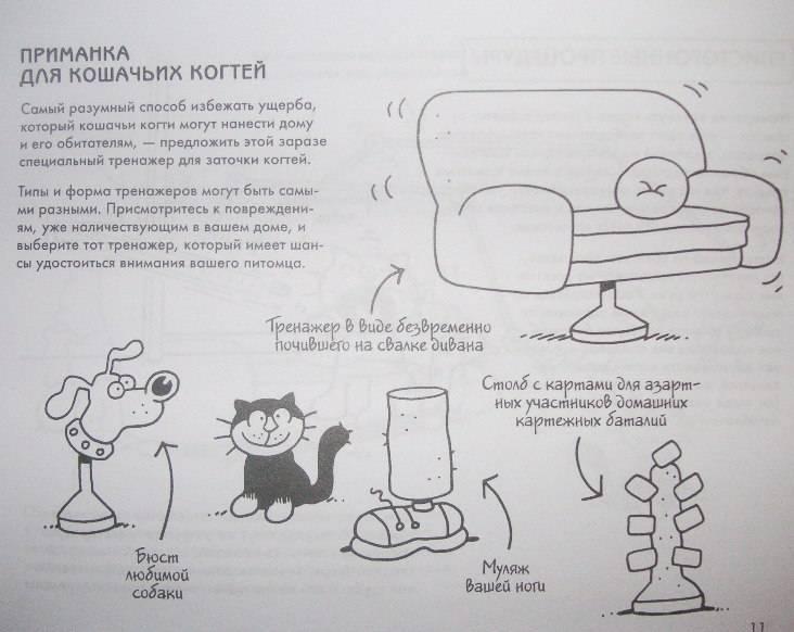 Иллюстрация 1 из 4 для Руководство по выживанию для владельцев кошек - Мартин Баксендейл   Лабиринт - книги. Источник: Rumeur
