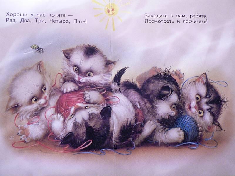 фото котята стишки