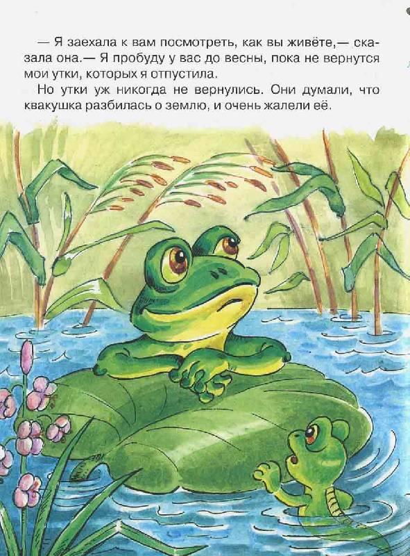 Читать сказку с картинками лягушка путешественница