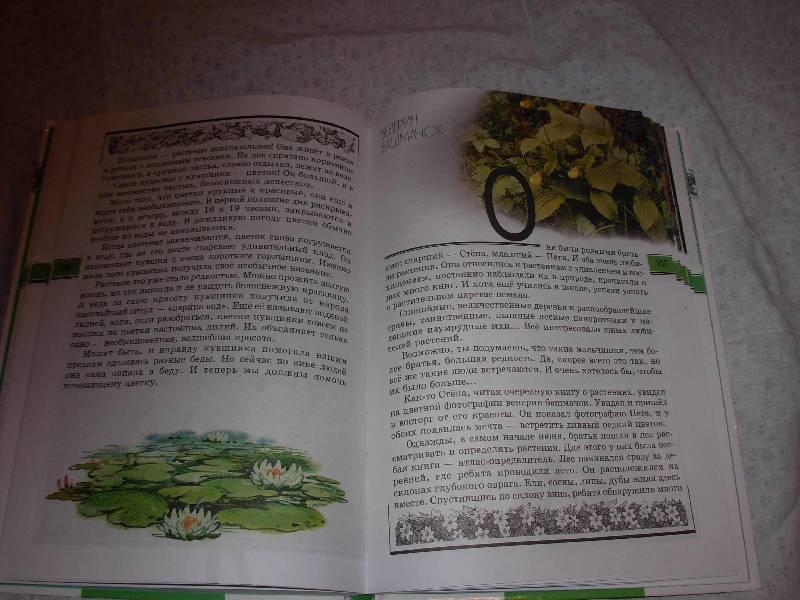 Великан На Поляне Книга Плешаков
