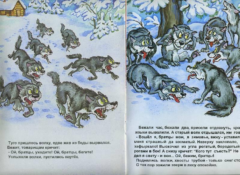 Иллюстрация 1 из 17 для Зимовье зверей | Лабиринт - книги. Источник: Pallada