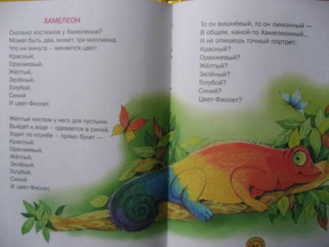 Иллюстрация 1 из 25 для Считалочки - Андрей Усачев   Лабиринт - книги. Источник: svemikh