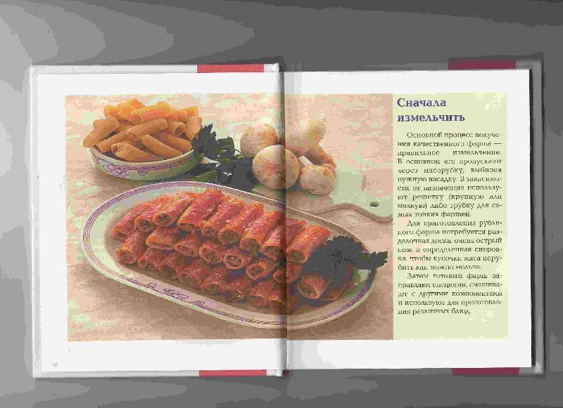 Иллюстрация 1 из 17 для Блюда из рубленого мяса - Ирина Румянцева | Лабиринт - книги. Источник: Урядова  Анна Владимировна