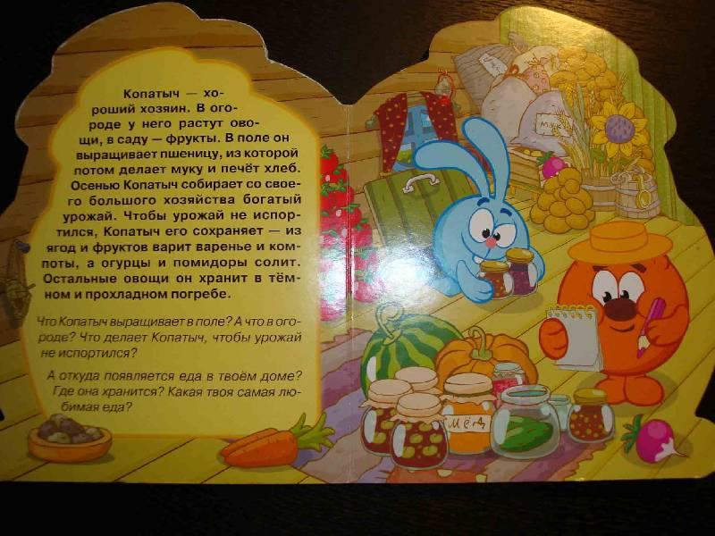 Иллюстрация 1 из 4 для Смешарики: Копатыч   Лабиринт - книги. Источник: Ogha