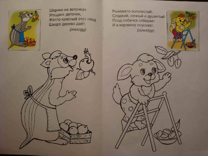 Иллюстрация 1 из 7 для У нас в саду - Скребцова, Лопатина   Лабиринт - книги. Источник: Ogha