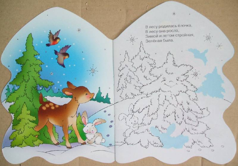 Иллюстрация 1 из 10 для В лесу родилась елочка... - Раиса Кудашева | Лабиринт - книги. Источник: ashatan