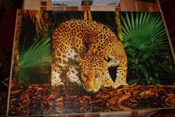 Иллюстрация 1 из 6 для Step Puzzle-1500 83013 Леопард   Лабиринт - игрушки. Источник: Hoty