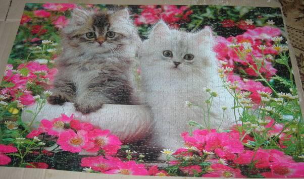 Иллюстрация 1 из 5 для Step Puzzle-1500 83022 Котята | Лабиринт - игрушки. Источник: Hoty