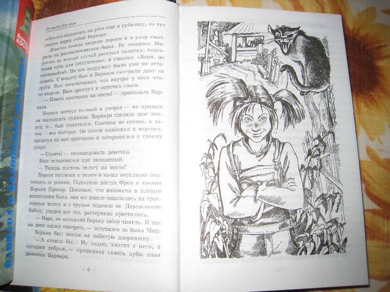 Иллюстрация 1 из 9 для Злая ведьма Варвара, или Когда зацветет папоротник - Всеволод Костров   Лабиринт - книги. Источник: Grom5