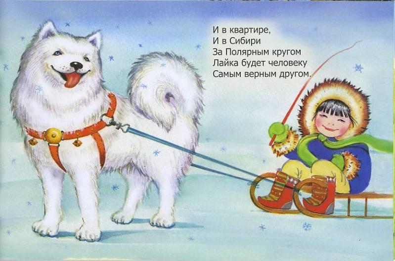 Иллюстрация 1 из 20 для Парад пород | Лабиринт - книги. Источник: Machaon