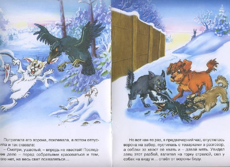 Иллюстрация 1 из 12 для Заяц-хваста | Лабиринт - книги. Источник: Machaon