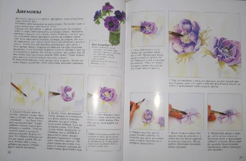 цветы акварелью фото: