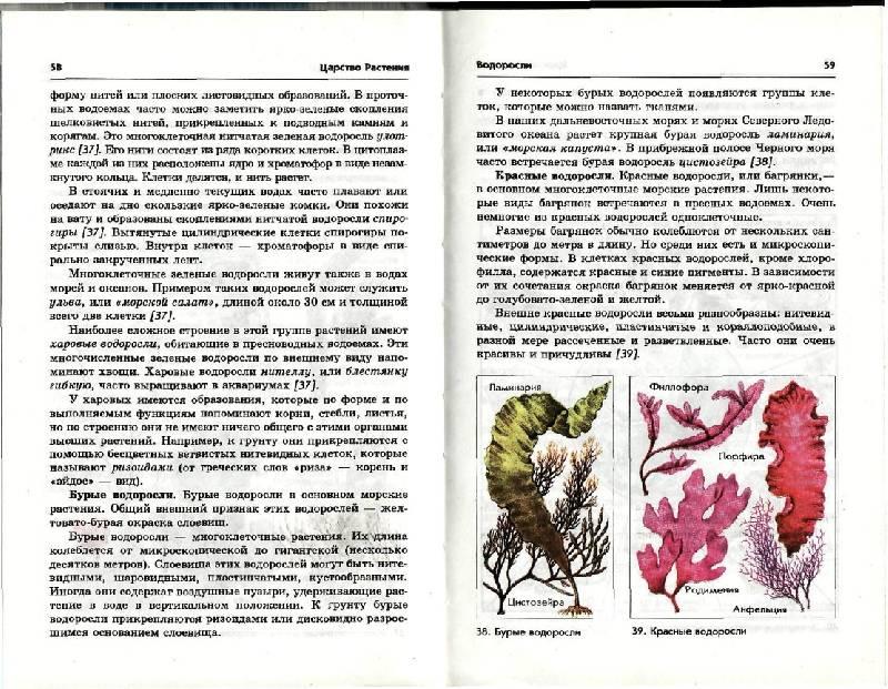 Иллюстрация 4 из 6 для книги биология