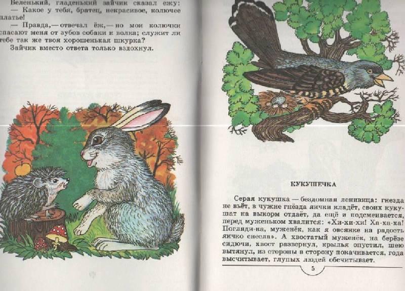 Иллюстрация 1 из 13 для Плутишка кот - Константин Ушинский | Лабиринт - книги. Источник: SVETLANKA