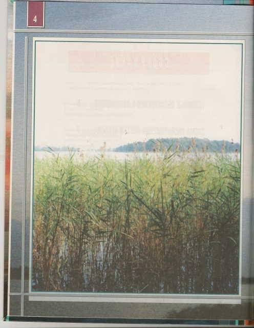 Иллюстрация 1 из 10 для Атлас Озеро Селигер и его окрестности | Лабиринт - книги. Источник: _Елена_