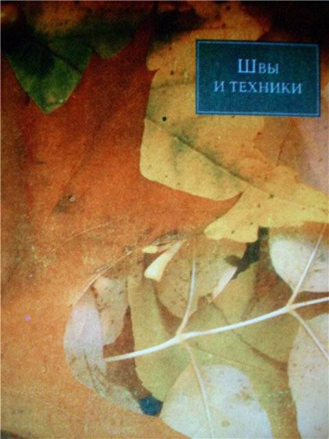 Иллюстрация 1 из 41 для Вышивка для отделки | Лабиринт - книги. Источник: света