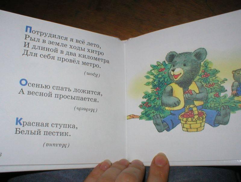 Иллюстрация 1 из 2 для Добрая утка: Загадки | Лабиринт - книги. Источник: Черникова Наталья Вячеславовна