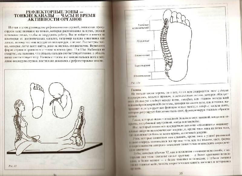 Иллюстрация 1 из 3 для Рефлексология: древнее искусство массажа ступней - Габриэла Аль-Шамали   Лабиринт - книги. Источник: Kaplan  Irma