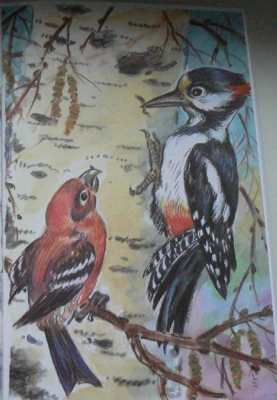 Иллюстрация 1 из 11 для Лесные сказки - Николай Сладков | Лабиринт - книги. Источник: -Ирина-
