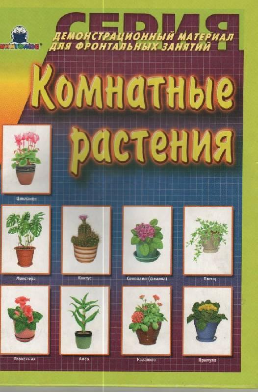 Демонстрационный материал для фронтальных занятий картон 290x210x5 см 24 стр.