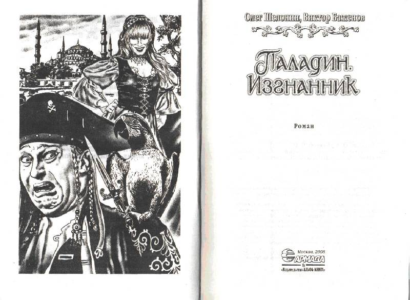 Иллюстрация 1 из 9 для Паладин. Изгнанник - Шелонин, Баженов   Лабиринт - книги. Источник: савин александр борисович