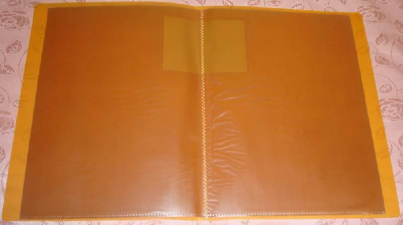 Иллюстрация 1 из 7 для Папка с 20 файлами А4 оранжевая | Лабиринт - канцтовы. Источник: Blossom