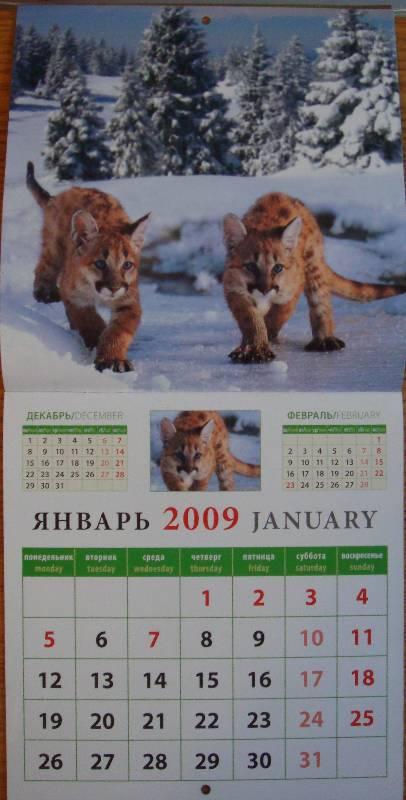 Иллюстрация 1 из 3 для Календарь 2009 Малыши (30810)   Лабиринт - сувениры. Источник: Амалька