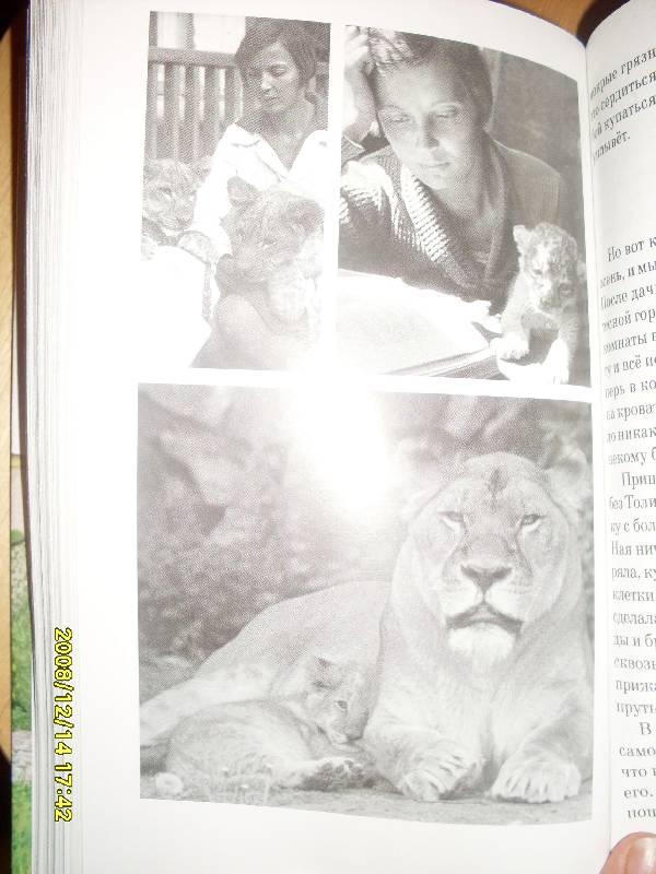 Иллюстрация 1 из 9 для Питомцы зоопарка - Вера Чаплина   Лабиринт - книги. Источник: Марта