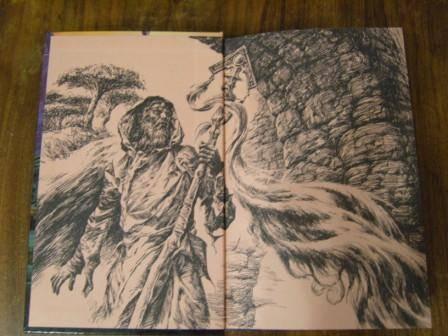 Иллюстрация 1 из 12 для Проводник - Николай Степанов | Лабиринт - книги. Источник: ZOK