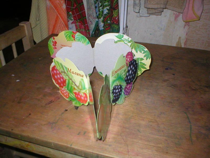 Иллюстрация 1 из 11 для Садовые ягоды | Лабиринт - книги. Источник: Черникова Наталья Вячеславовна