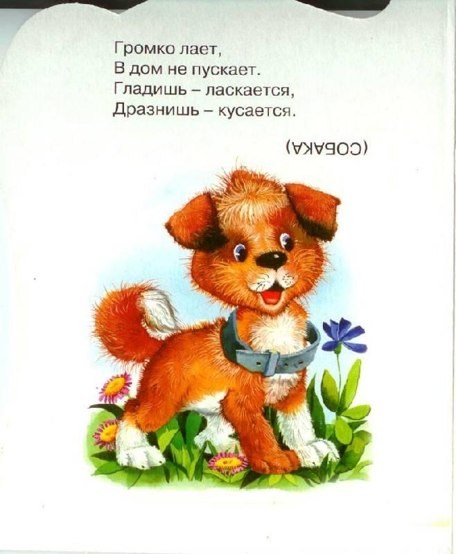 Иллюстрация 1 из 6 для На лугу пасутся ко... | Лабиринт - книги. Источник: Zhanna