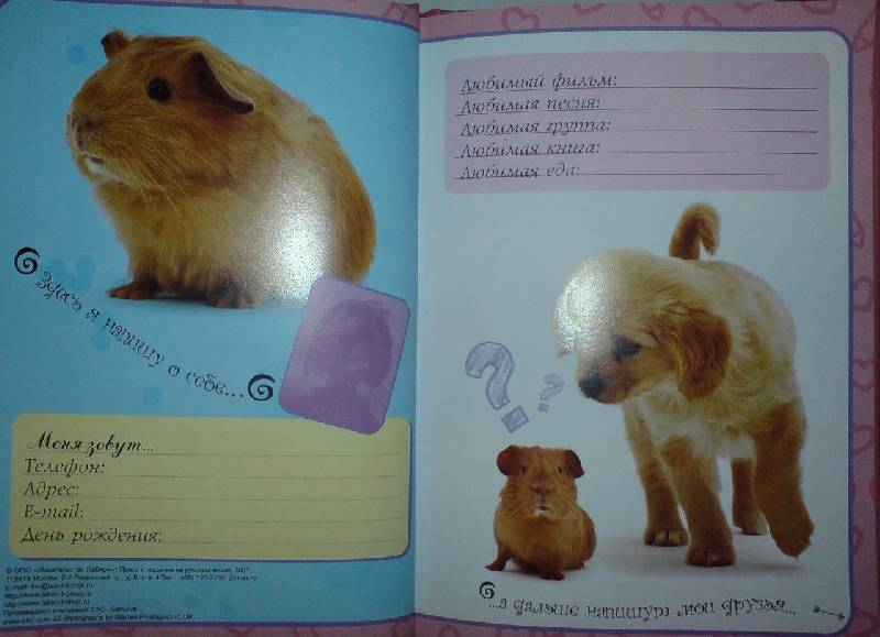 Иллюстрация 1 из 23 для Мои друзья. Альбом для девочек   Лабиринт - книги. Источник: Настёна