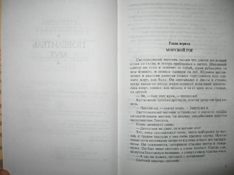 Иллюстрация 1 из 3 для Повелитель мух - Уильям Голдинг | Лабиринт - книги. Источник: Флинкс