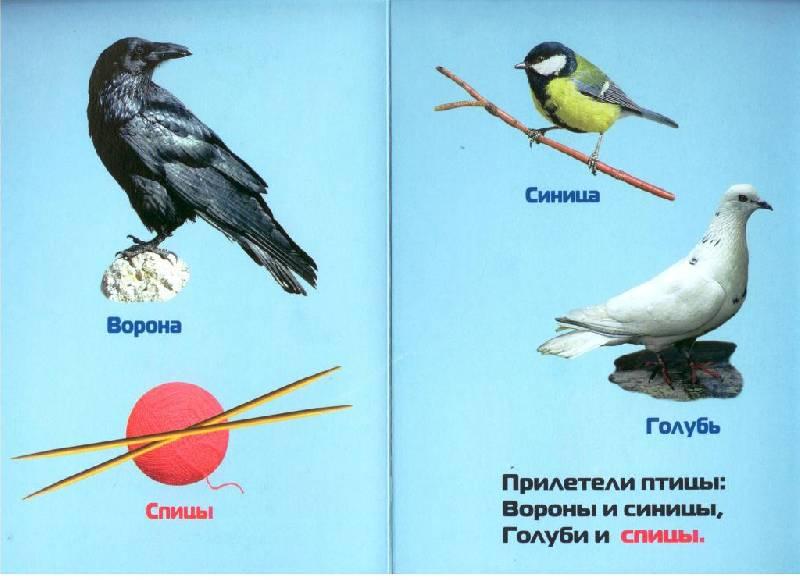 Иллюстрация 1 из 3 для Прилетели птицы - Инна Барская | Лабиринт - книги. Источник: Zhanna