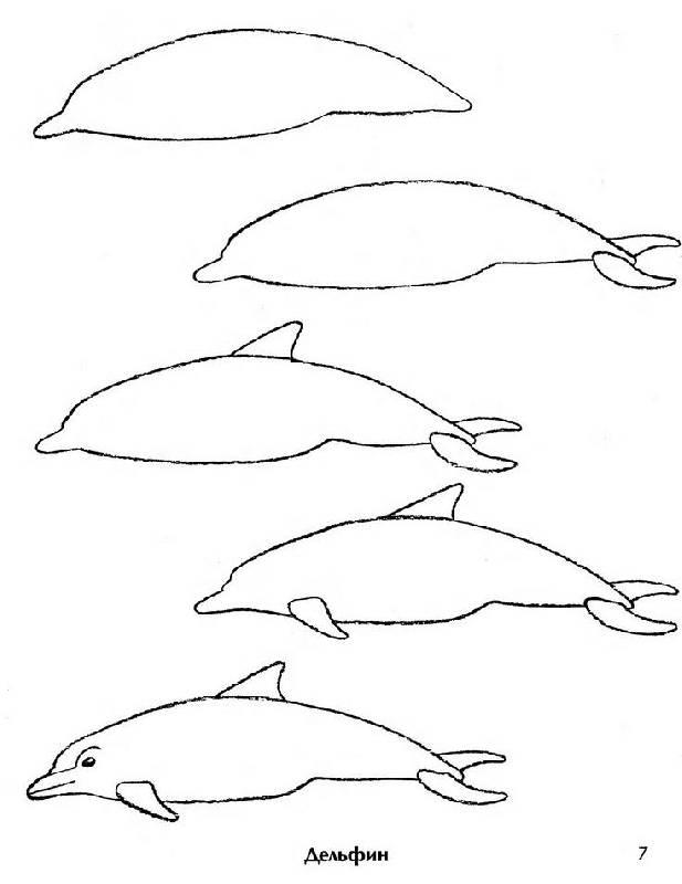 Иллюстрация 1 из 41 для Рисование. Первые шаги - Динара Селиверстова | Лабиринт - книги. Источник: The Cat